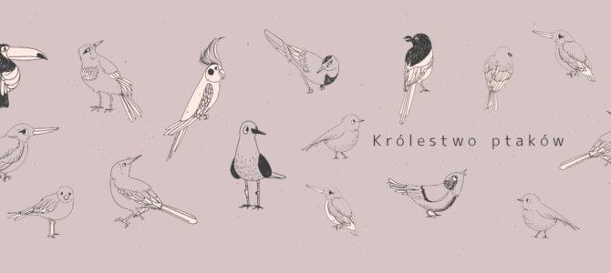 Afryka. Królestwo ptaków.