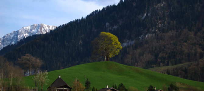 Szwajcarski sen 2.